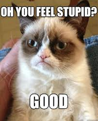 Grumpy Cat Stupid Alternative