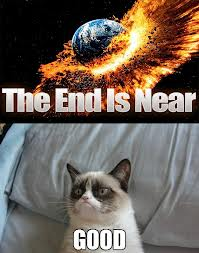 Grumpy Cat The End is Near