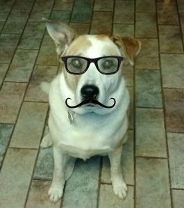 Inspector Parker