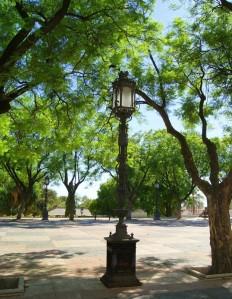 Streetlight Canstock