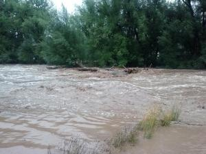 Left Hand Creek during the flood of 2013 (c) Piper Bayard